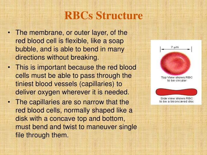 Rbcs structure