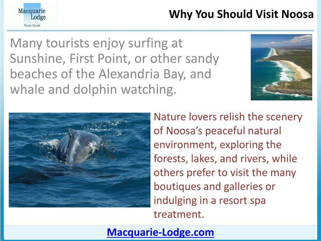 Many tourists enjoy surfing at Sunshine, First Point, or other sandy beaches of the Alexandria Bay, and whale and dolphin watching.