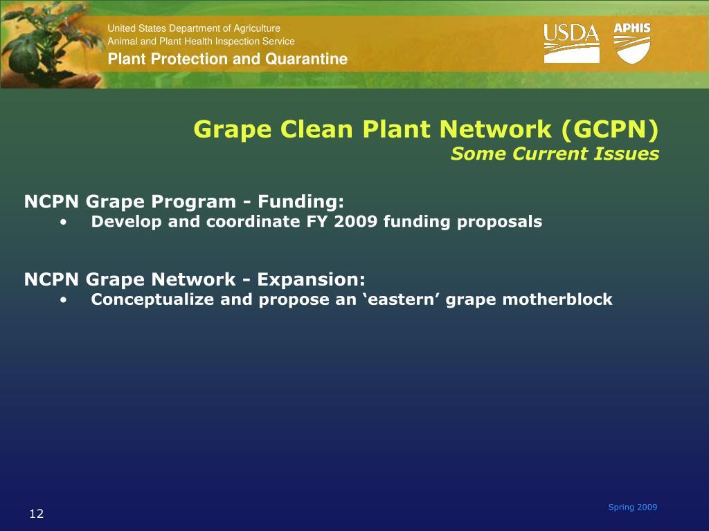 Grape Clean Plant Network (GCPN)