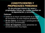 constituyentes y propiedades primarias