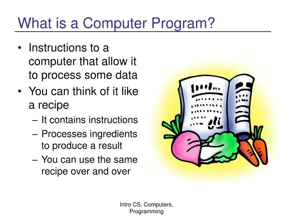What is a Computer Program?