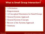 what is small group interaction2