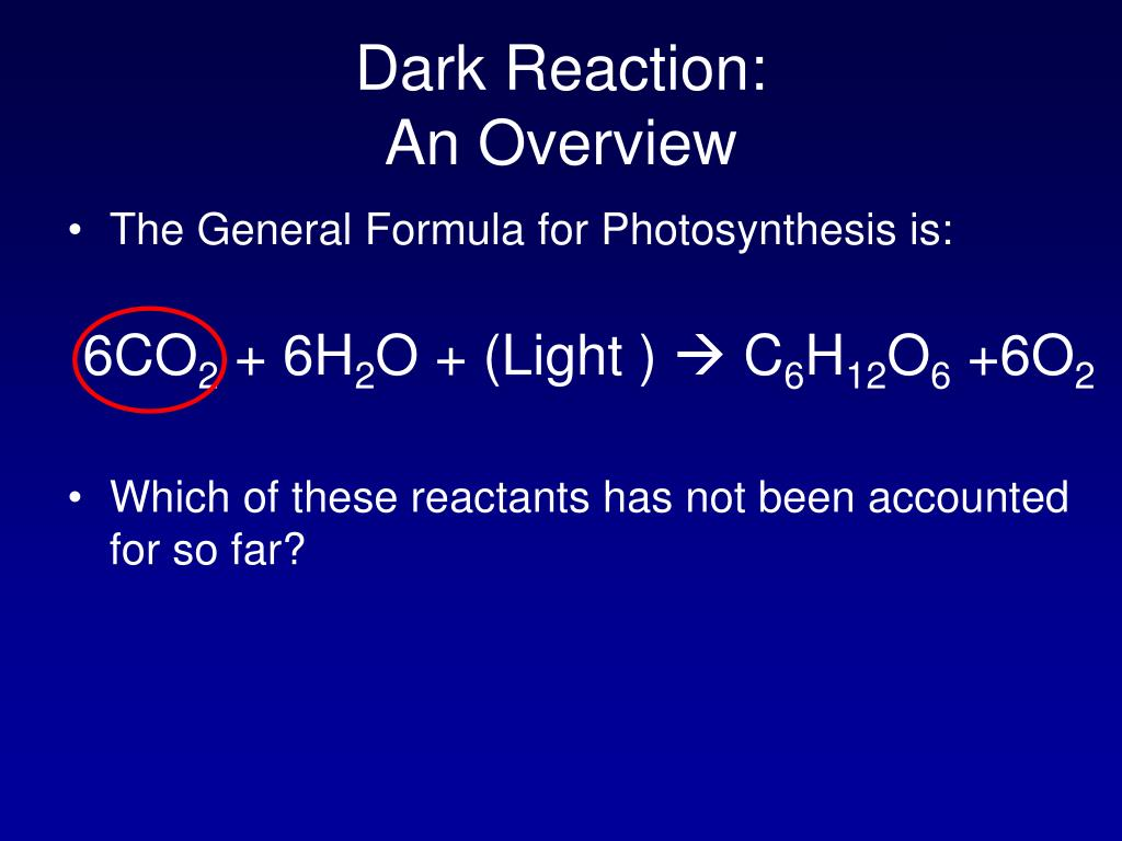 Dark Reaction: