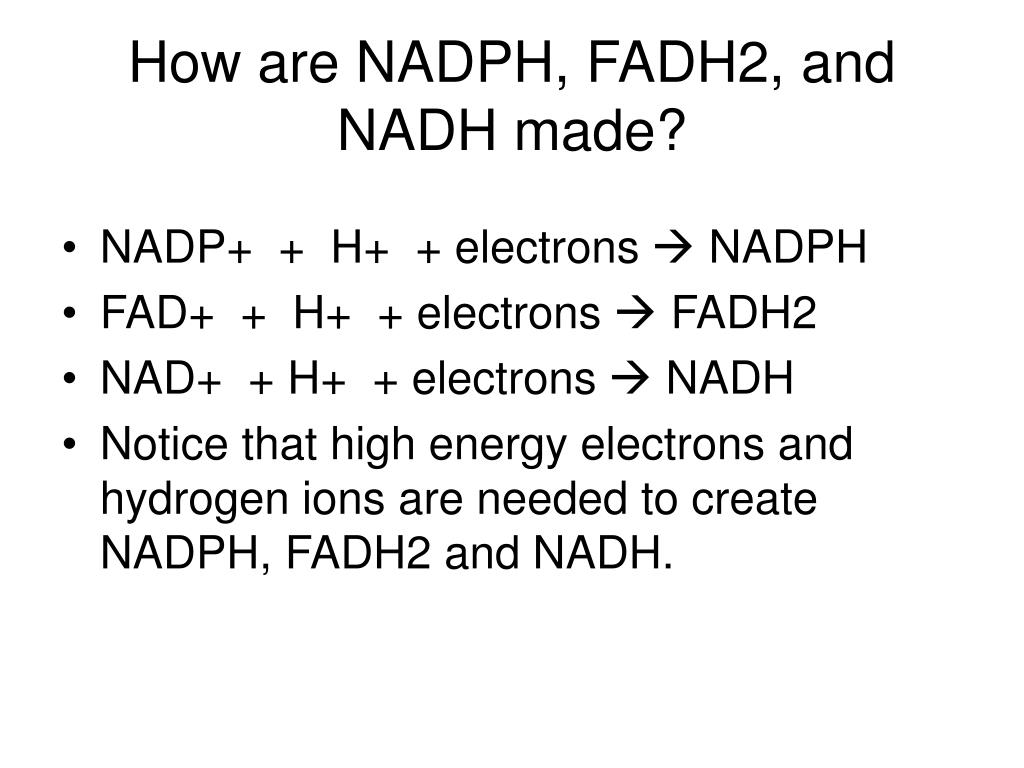 How are NADPH, FADH2, and NADH made?