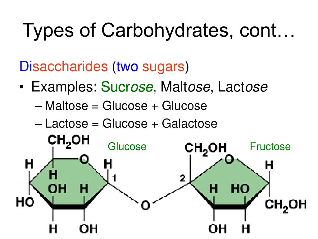 Types of Carbohydrates, cont…