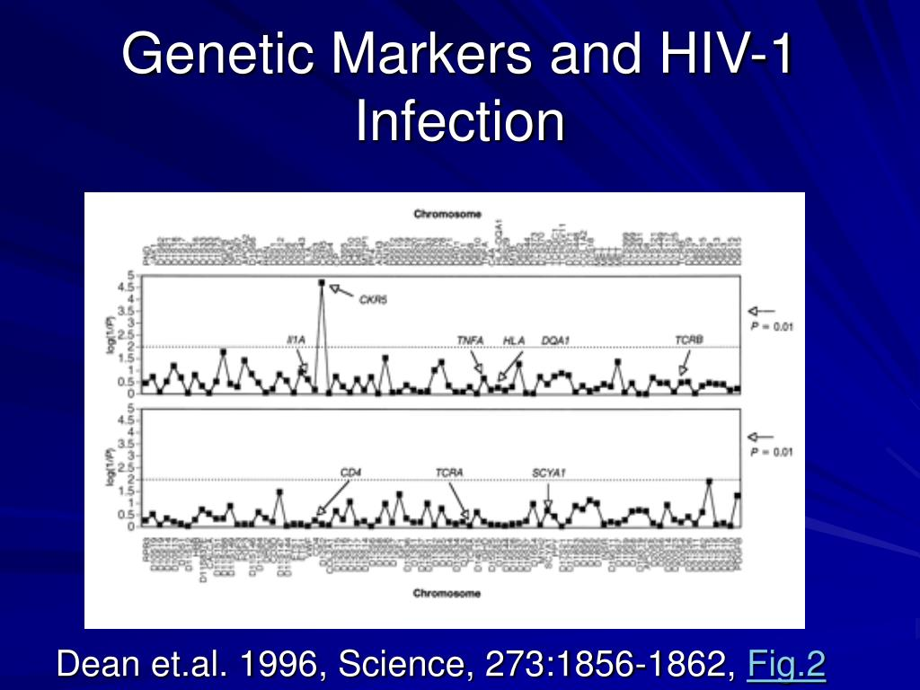 Genetic Markers and HIV-1 Infection