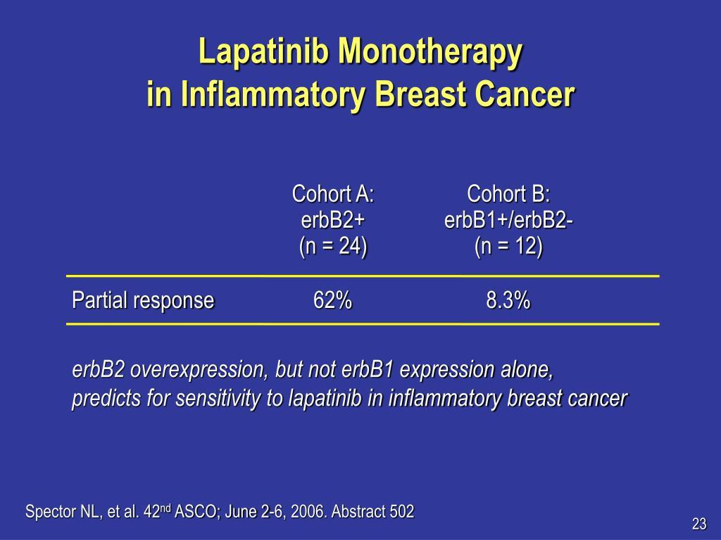 Lapatinib Monotherapy