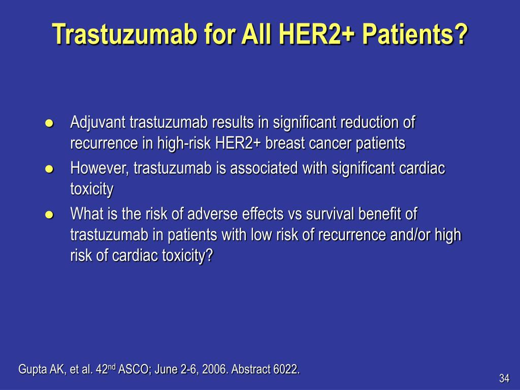 Trastuzumab for All HER2+ Patients?