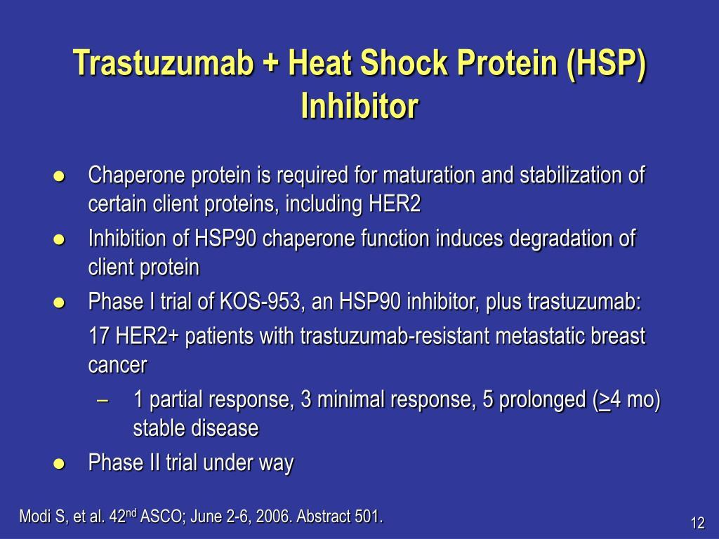 Trastuzumab + Heat Shock Protein (HSP) Inhibitor