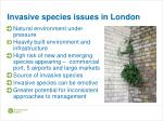 invasive species issues in london