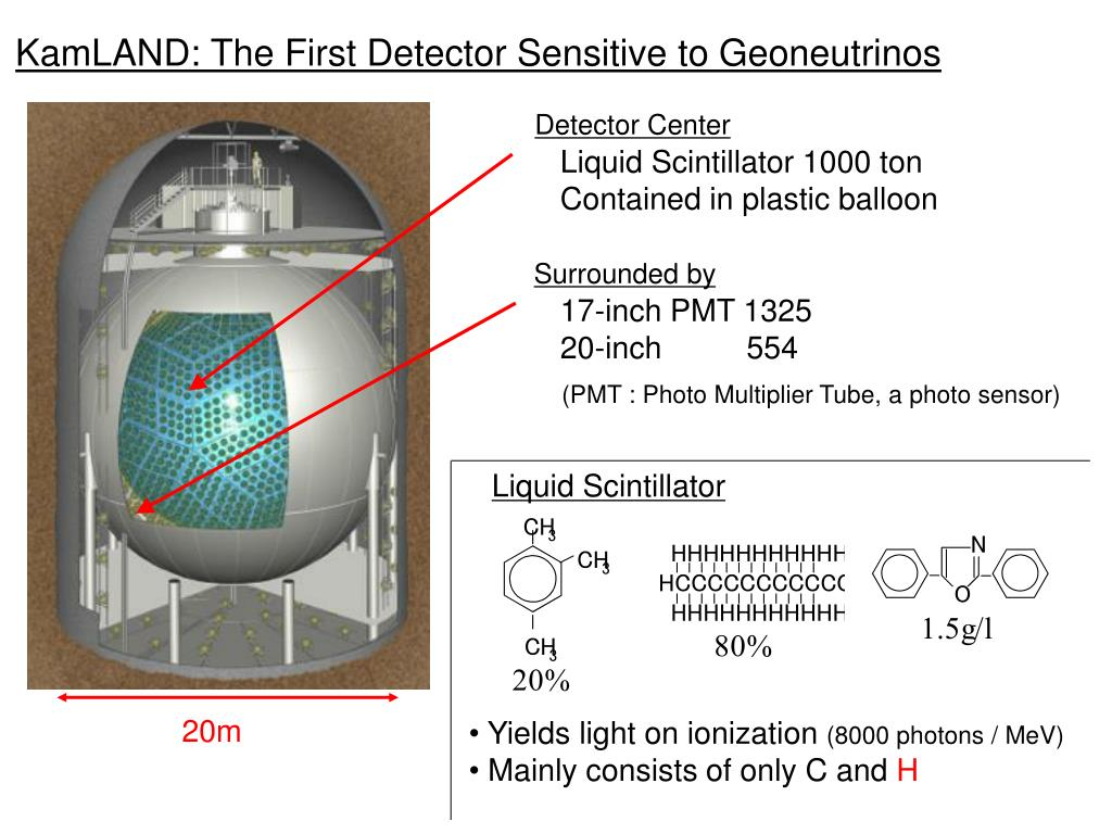 KamLAND: The First Detector Sensitive to Geoneutrinos