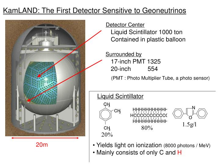 Kamland the first detector sensitive to geoneutrinos