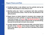 regret theory and risk