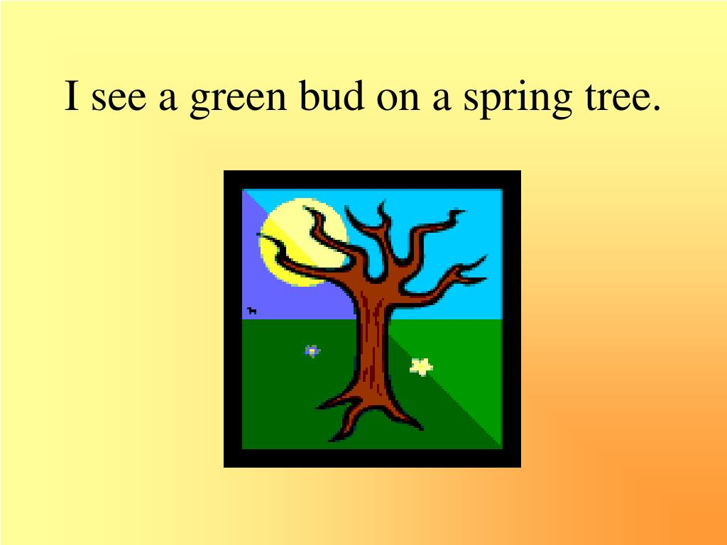 I see a green bud on a spring tree.