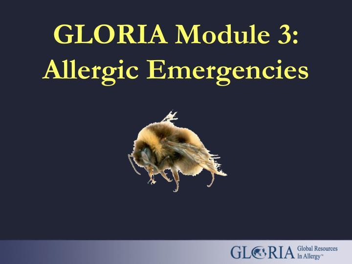 GLORIA Module 3: