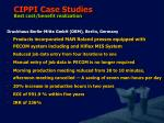 cippi case studies best cost benefit realization11