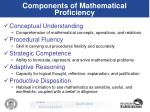 components of mathematical proficiency