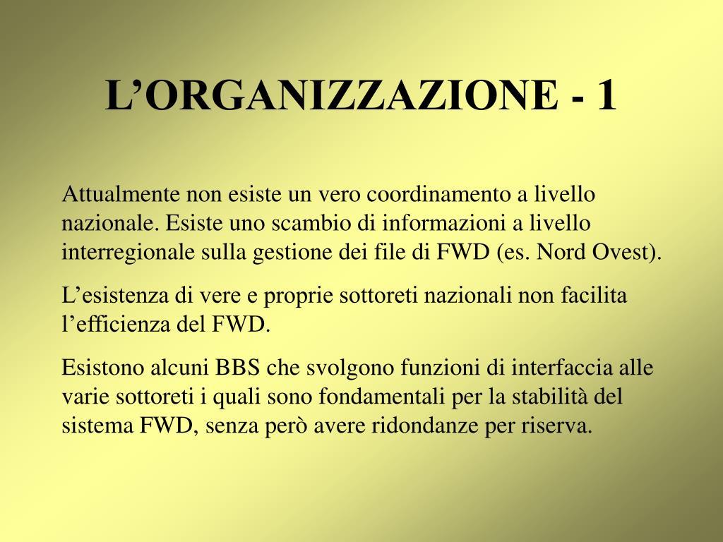 L'ORGANIZZAZIONE - 1