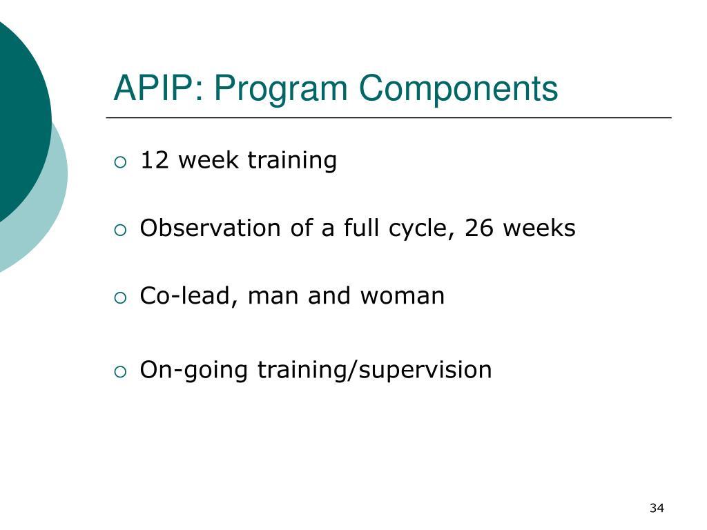 APIP: Program Components