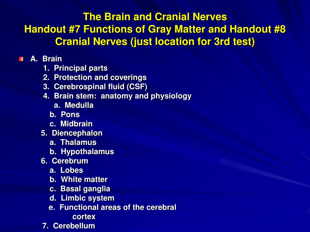 PPT - The Brain and Cranial Nerves Handout #7 Functions of Gray ...