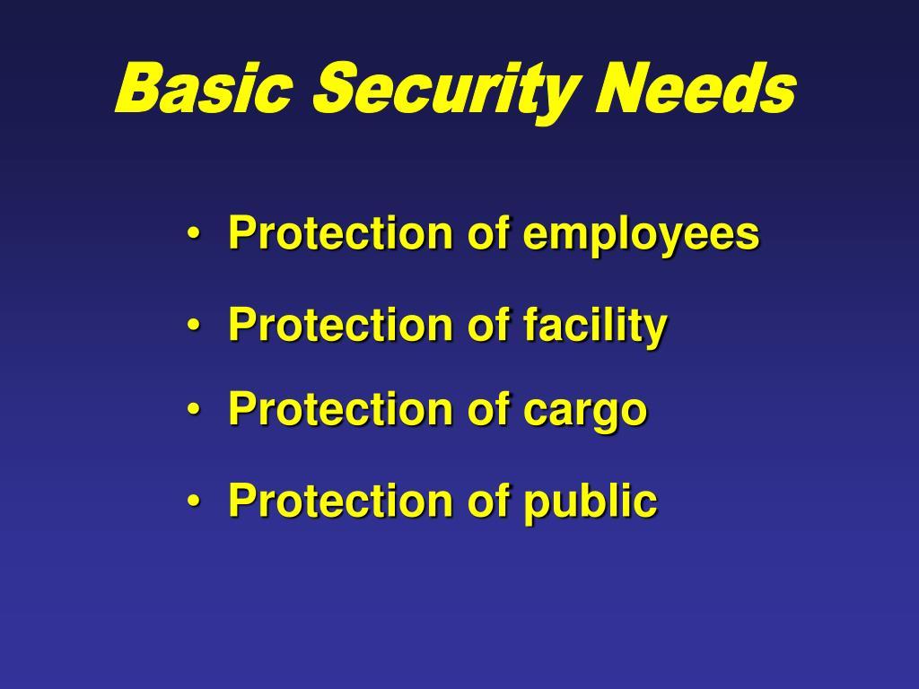 Basic Security Needs