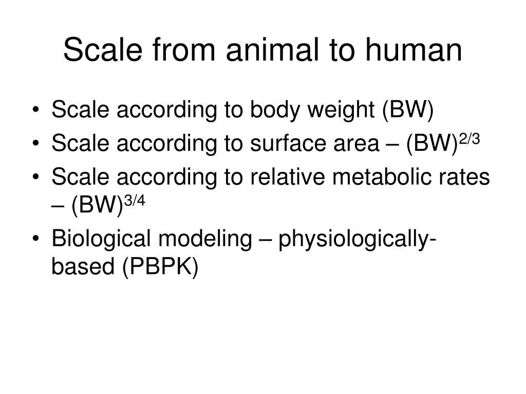 Scale from animal to human