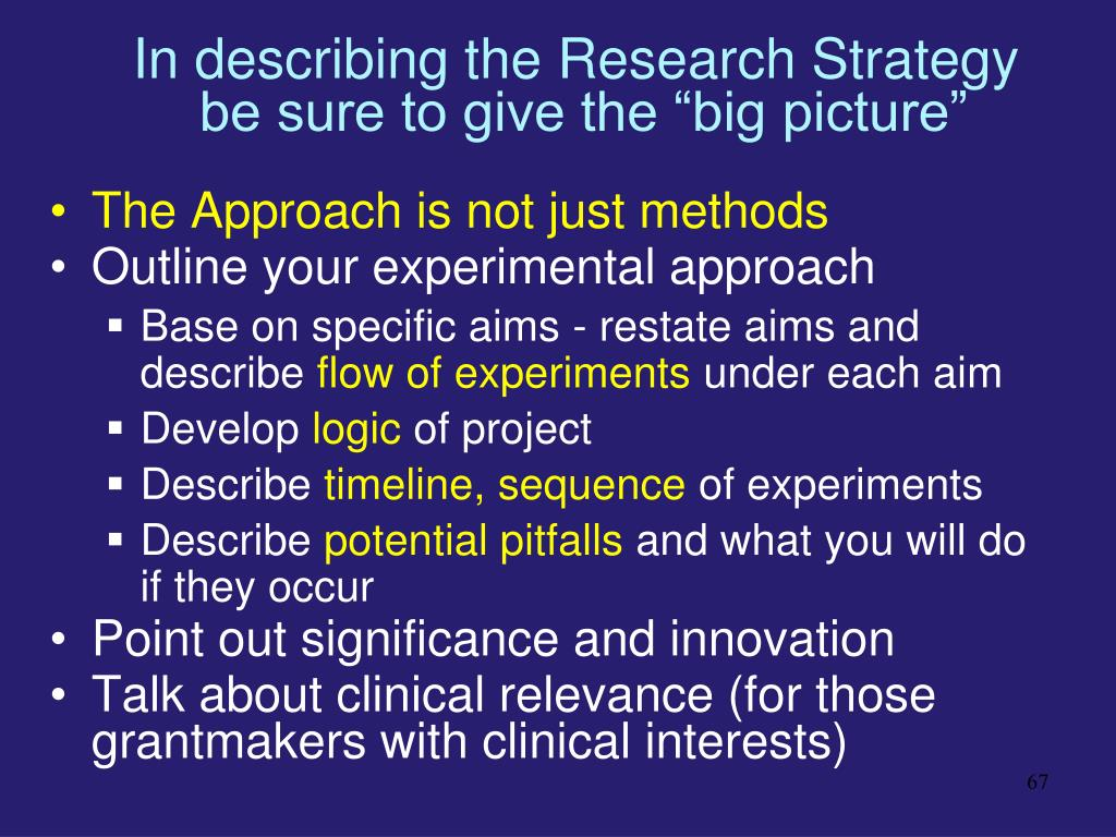 In describing the Research Strategy