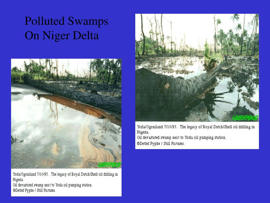Polluted Swamps