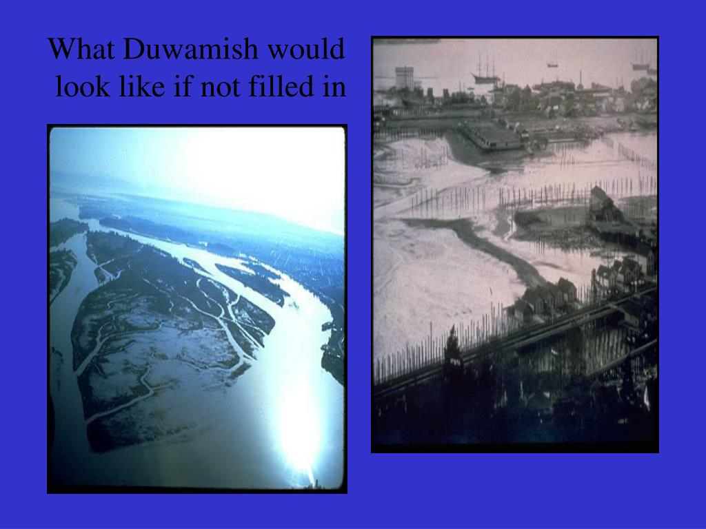 What Duwamish would