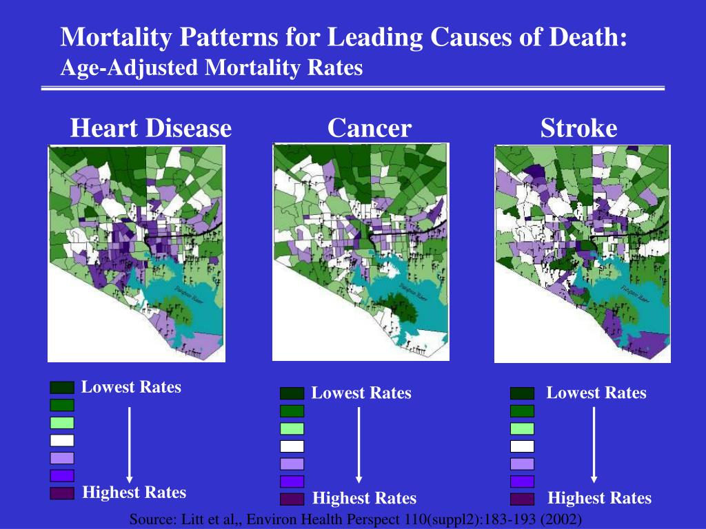 Mortality Patterns for Leading Causes of Death: