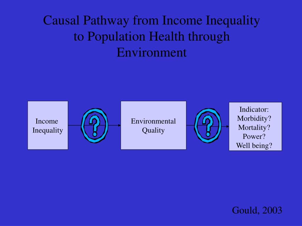Causal Pathway from Income Inequality to Population Health through Environment