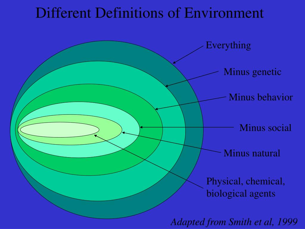 Different Definitions of Environment