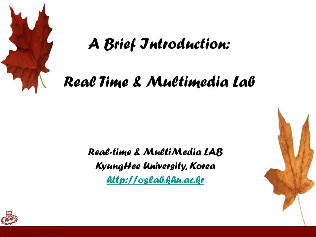 a brief introduction real time multimedia lab l.