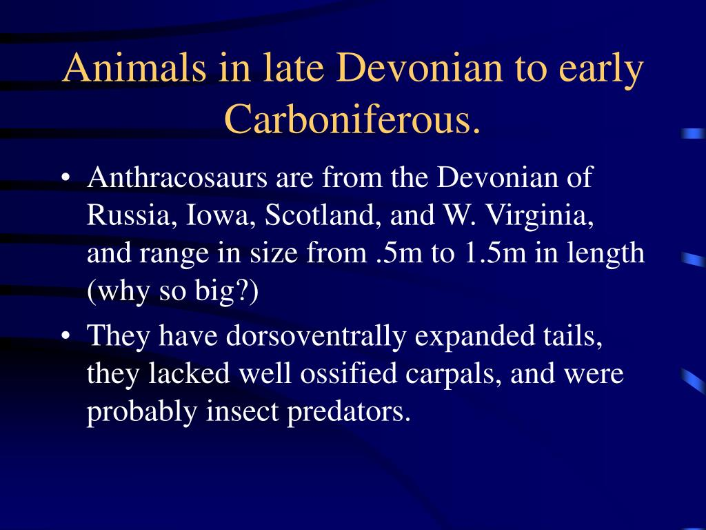 Animals in late Devonian to early Carboniferous.