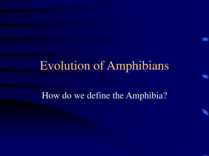 evolution of amphibians n.