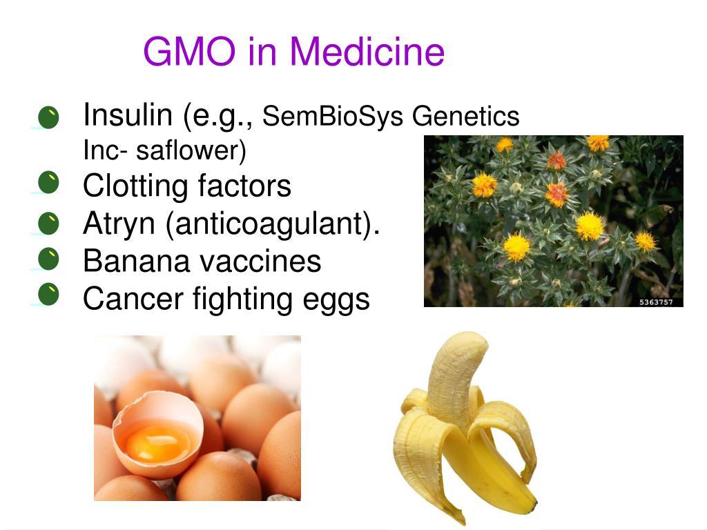 GMO in Medicine