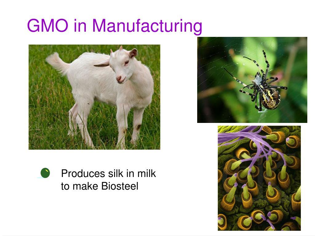 GMO in Manufacturing