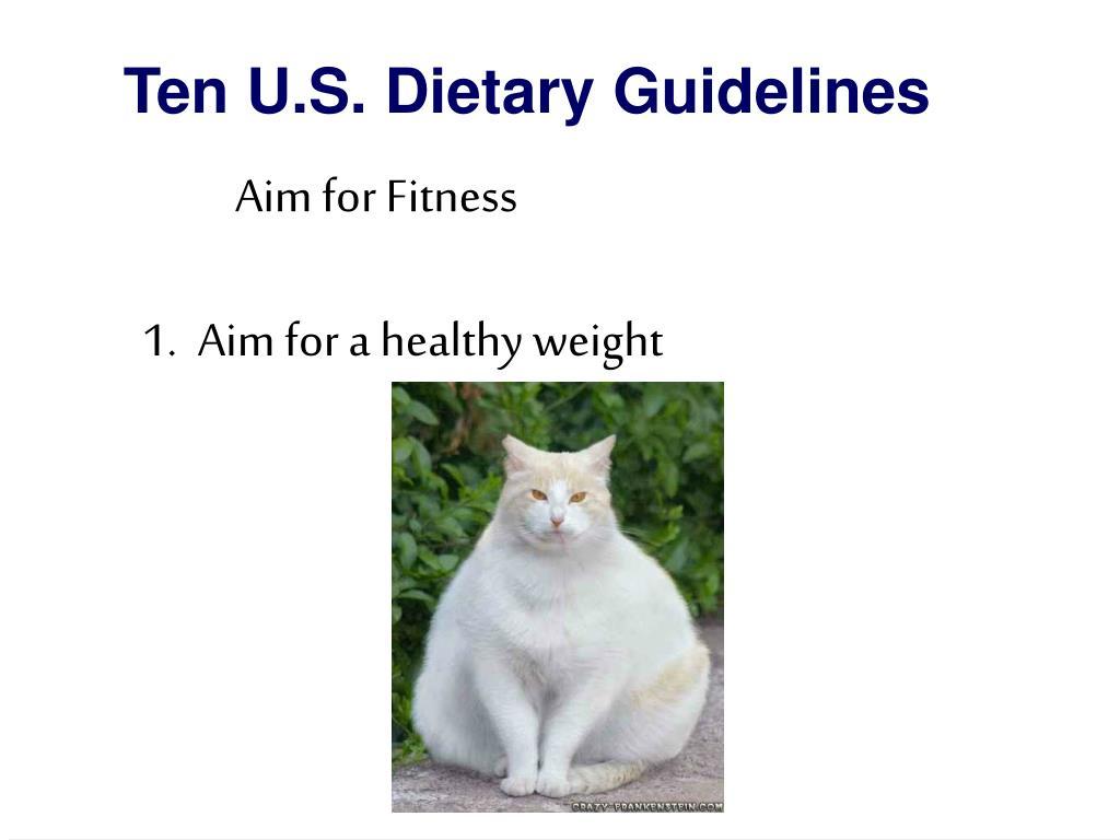 Ten U.S. Dietary Guidelines