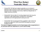 what does budget neutrality mean