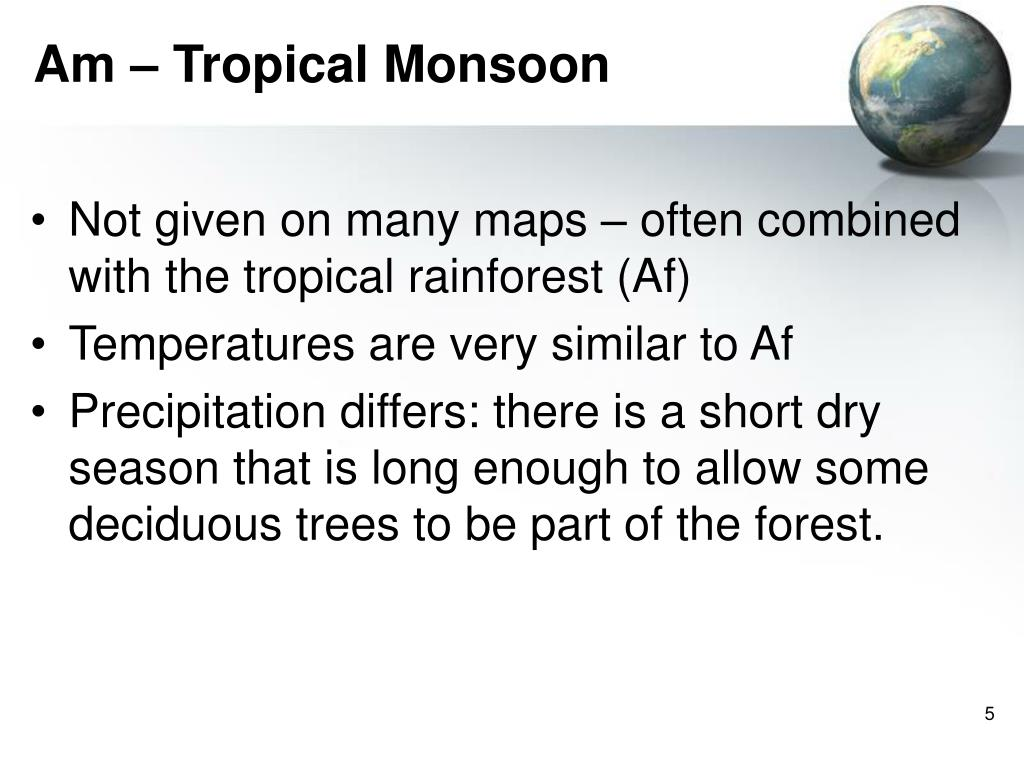 Am – Tropical Monsoon