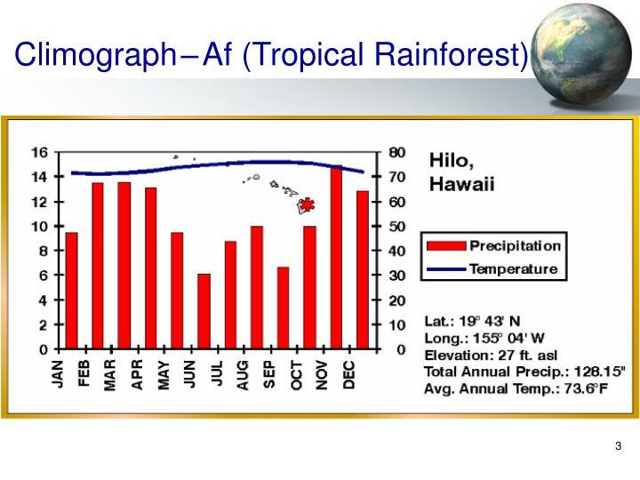 Climograph af tropical rainforest