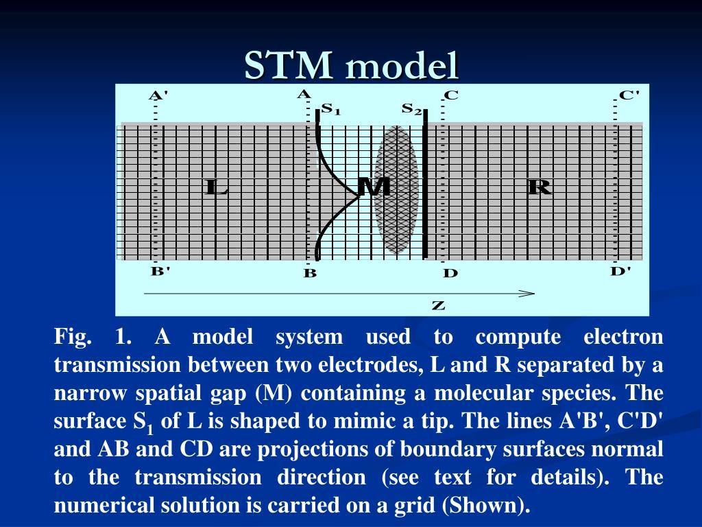 STM model