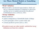 are these mental models or something else