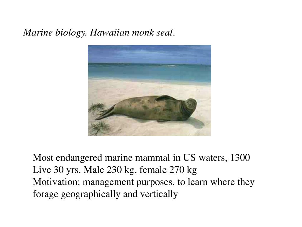 Marine biology. Hawaiian monk seal