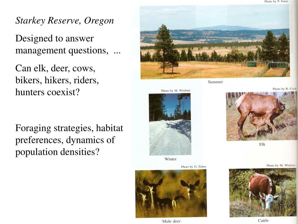 Starkey Reserve, Oregon