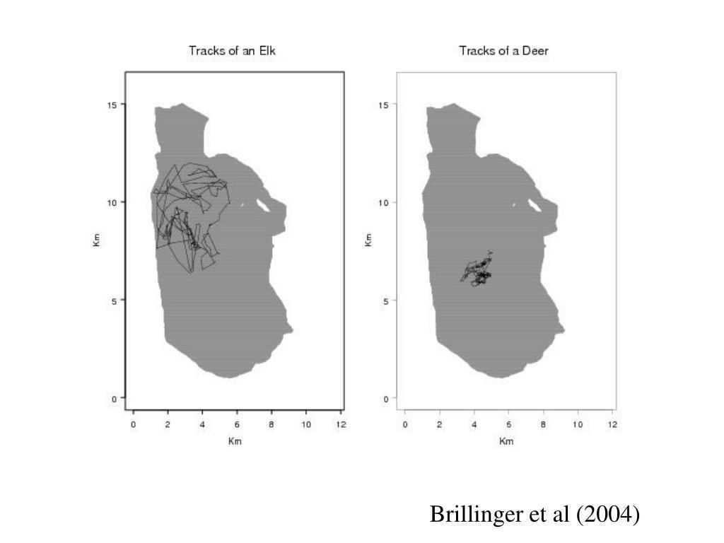 Brillinger et al (2004)