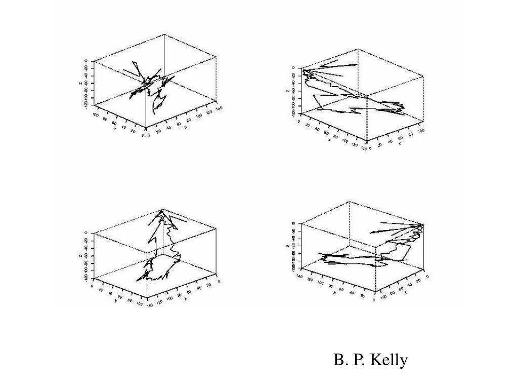 B. P. Kelly