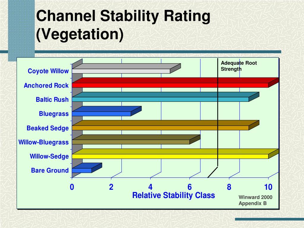 Channel Stability Rating (Vegetation)