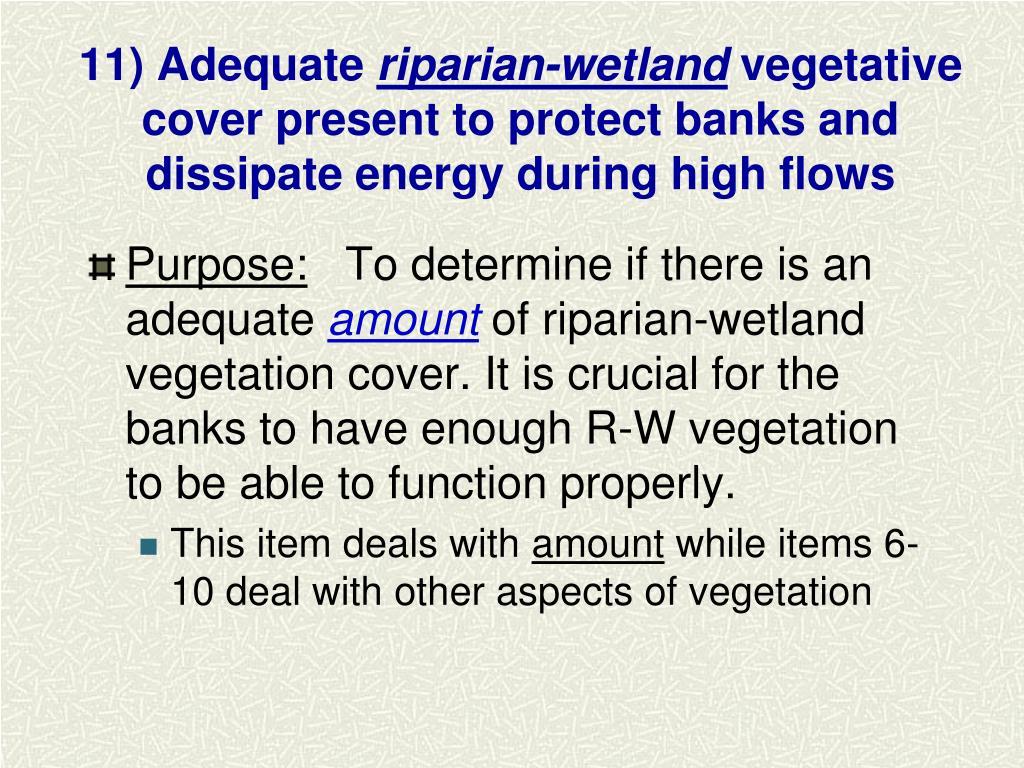 11) Adequate