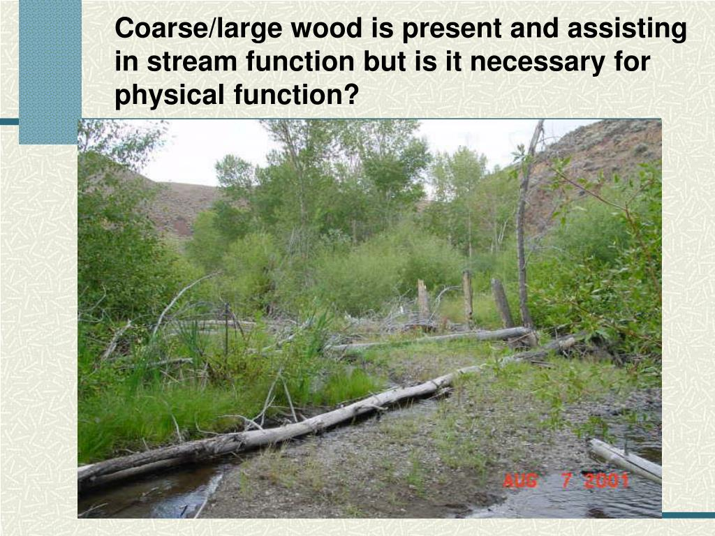 Coarse/large wood is present and assisting in stream function but is it necessary for physical function?